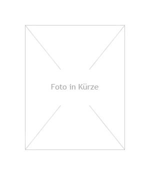 Granit Laterne Rokkuku Yukimi H 50 grau
