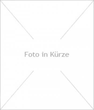 Edelstahl Gartenbrunnen Frankfurt 3er SET 150S30